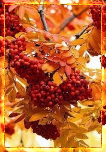 Овсень праздник, обряды