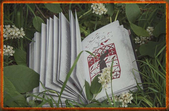 люди и духи, книга сказок, книга ольги бояновой