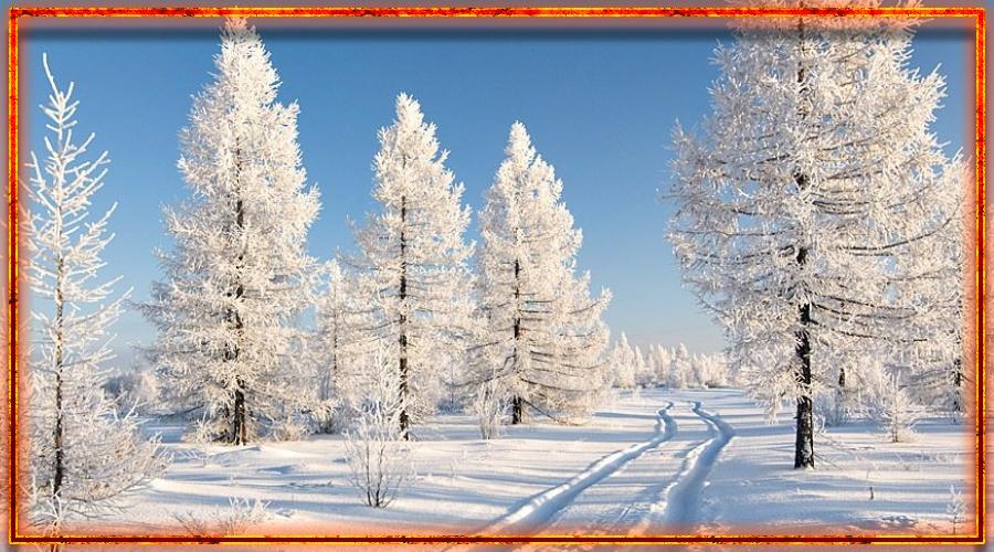 славянский календарь, времена года, декабрь, студень