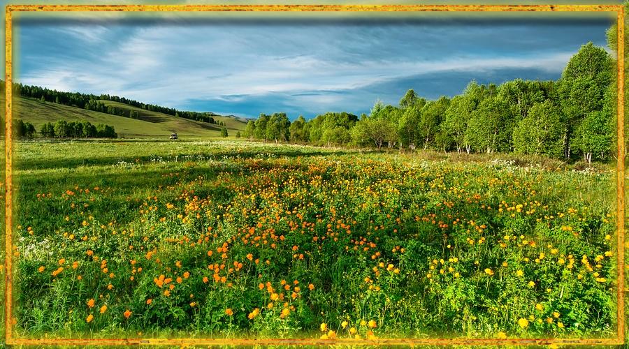 славянский календарь, времена года, лето, июнь, разноцвет