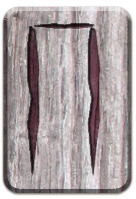 славянская руна Перун, руна славянского алфавита, руна Перун, славянская руна, Перун