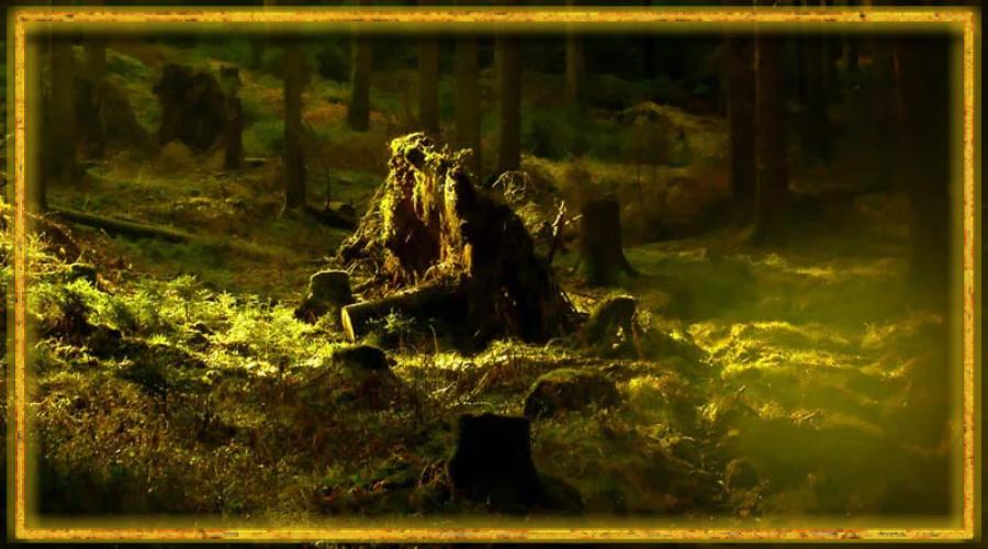 леший, лесовик, как выглядит леший