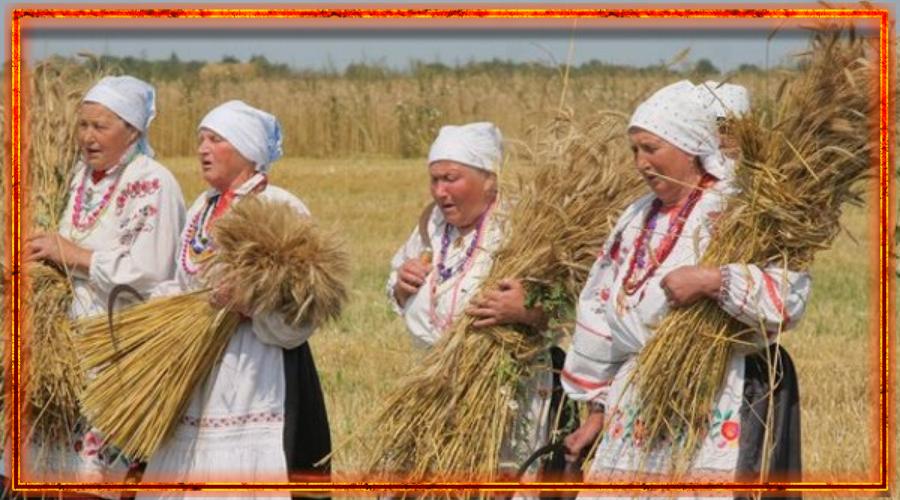 славяне, осенины, сбор урожая, зажинки, спожинки, дожинки