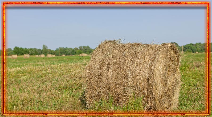 стог сена, земледелие славян
