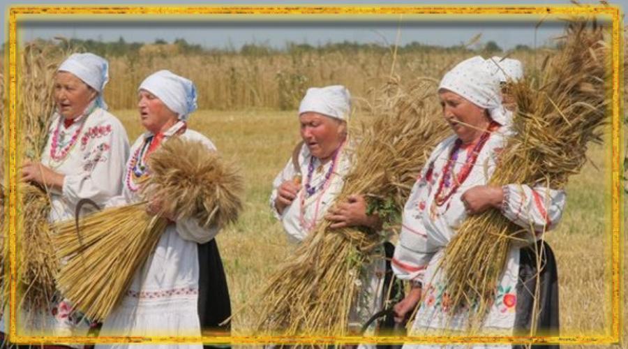 сбор урожая, славянский авсень